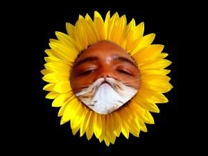 sunbeard